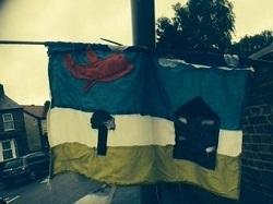 flag_it_up_friday.jpg