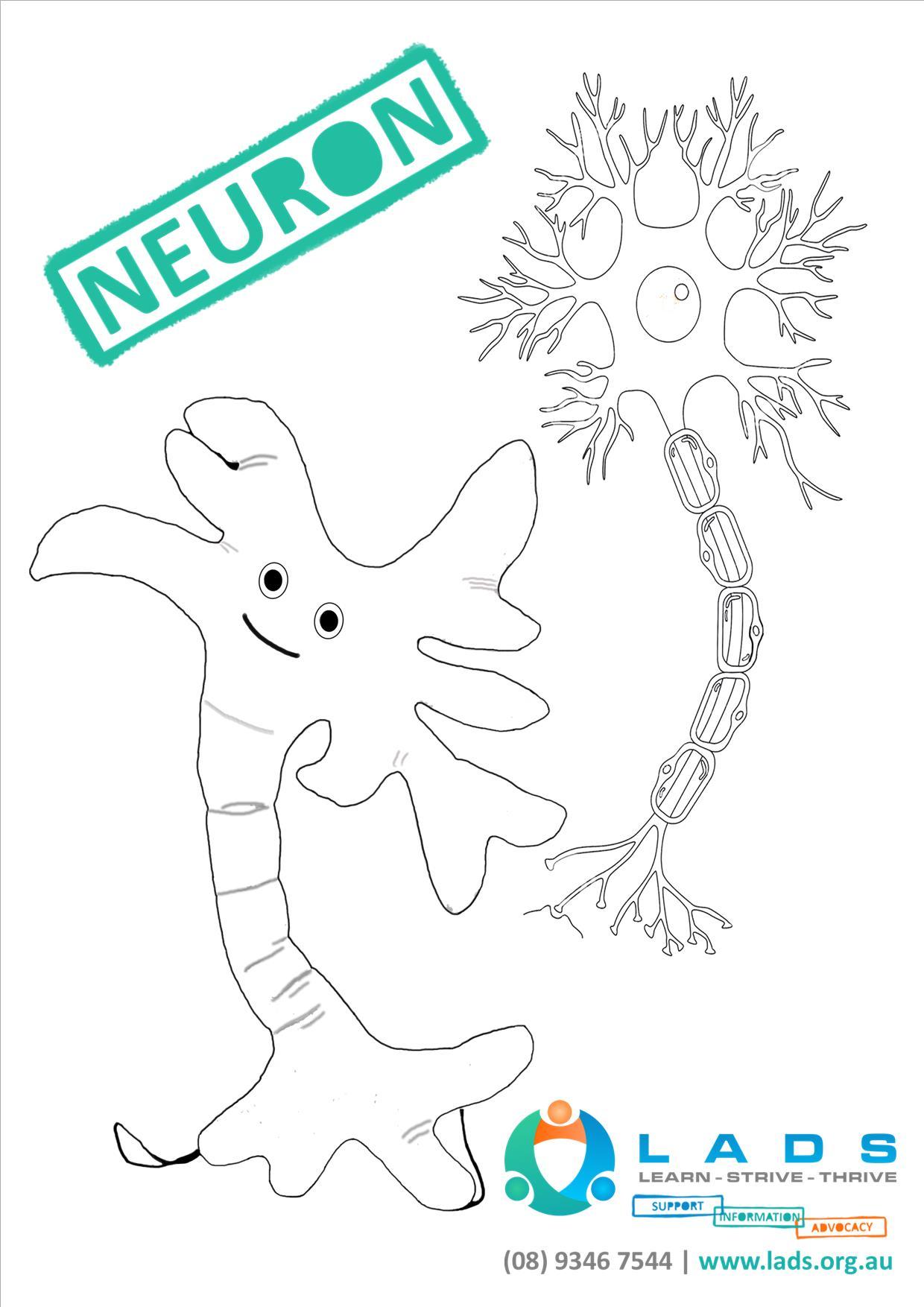 20160422_Neurons_A4.jpg