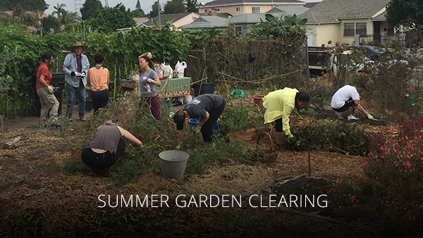 teaching-garden-cleanup-2017aug.png