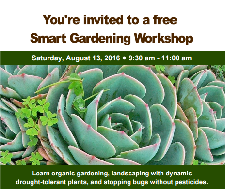 dwp-smartgardening-aug13.png