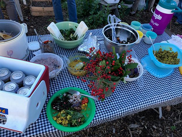vegetarian lunch at lagg teaching garden
