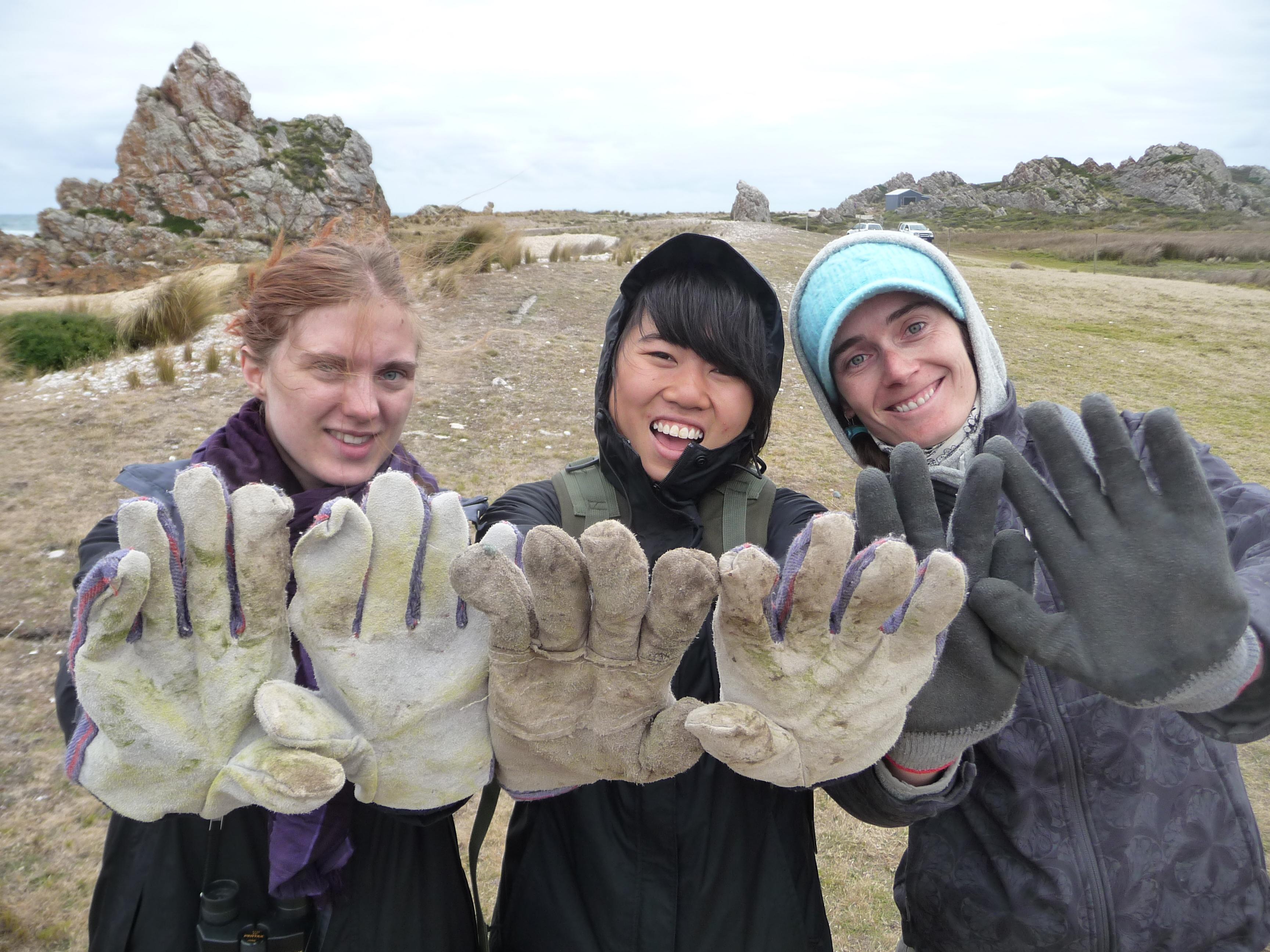 LTas Volunteer Hands