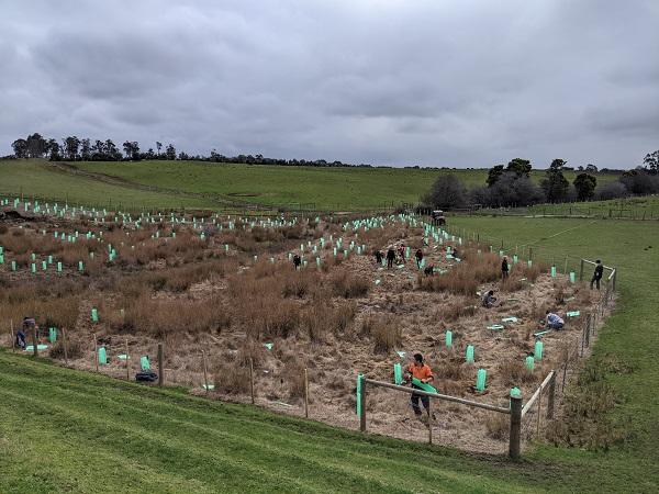 Glenore Farm - Landcare Tasmania