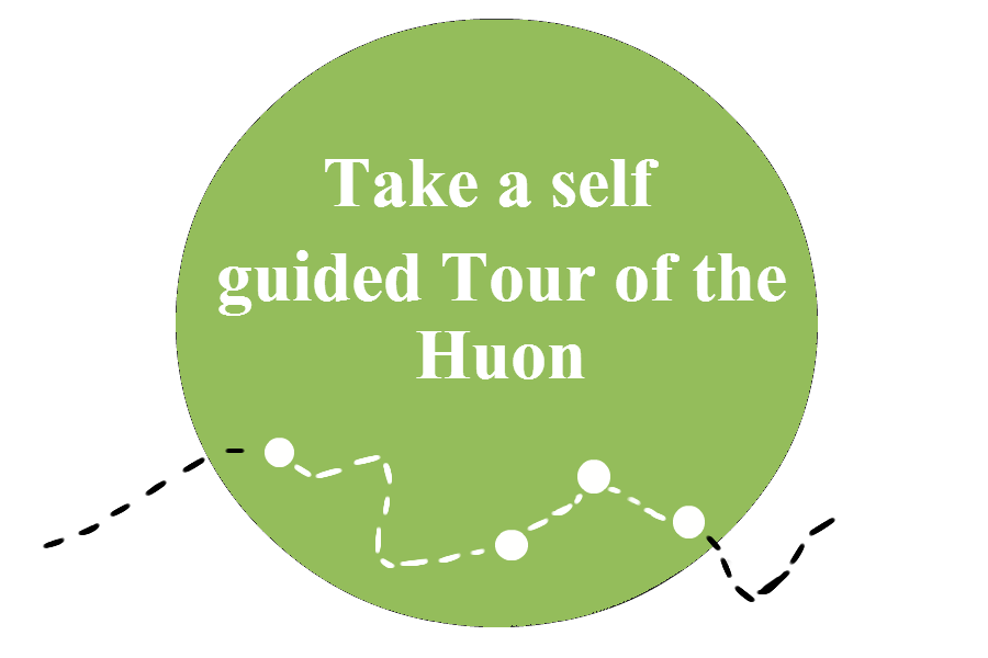Self_Guided_Tour3.png