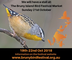 20181021_Bruny_Bird_Festival_-_Market_Day_Advert_small.jpg