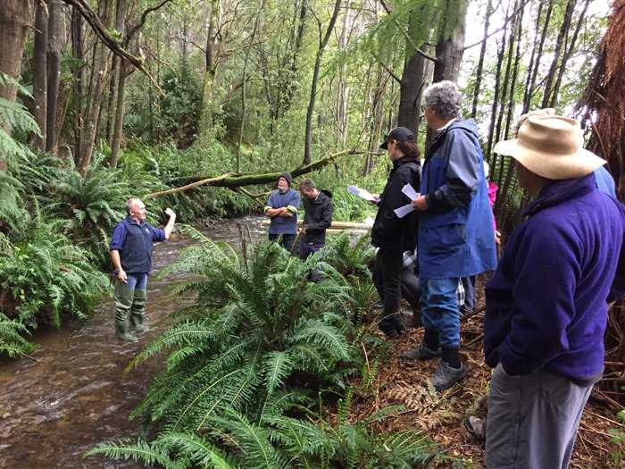 East_Tamar_NRMNorth_Giant_freshwater_crayfish_training_session_in_Lilydale..jpg