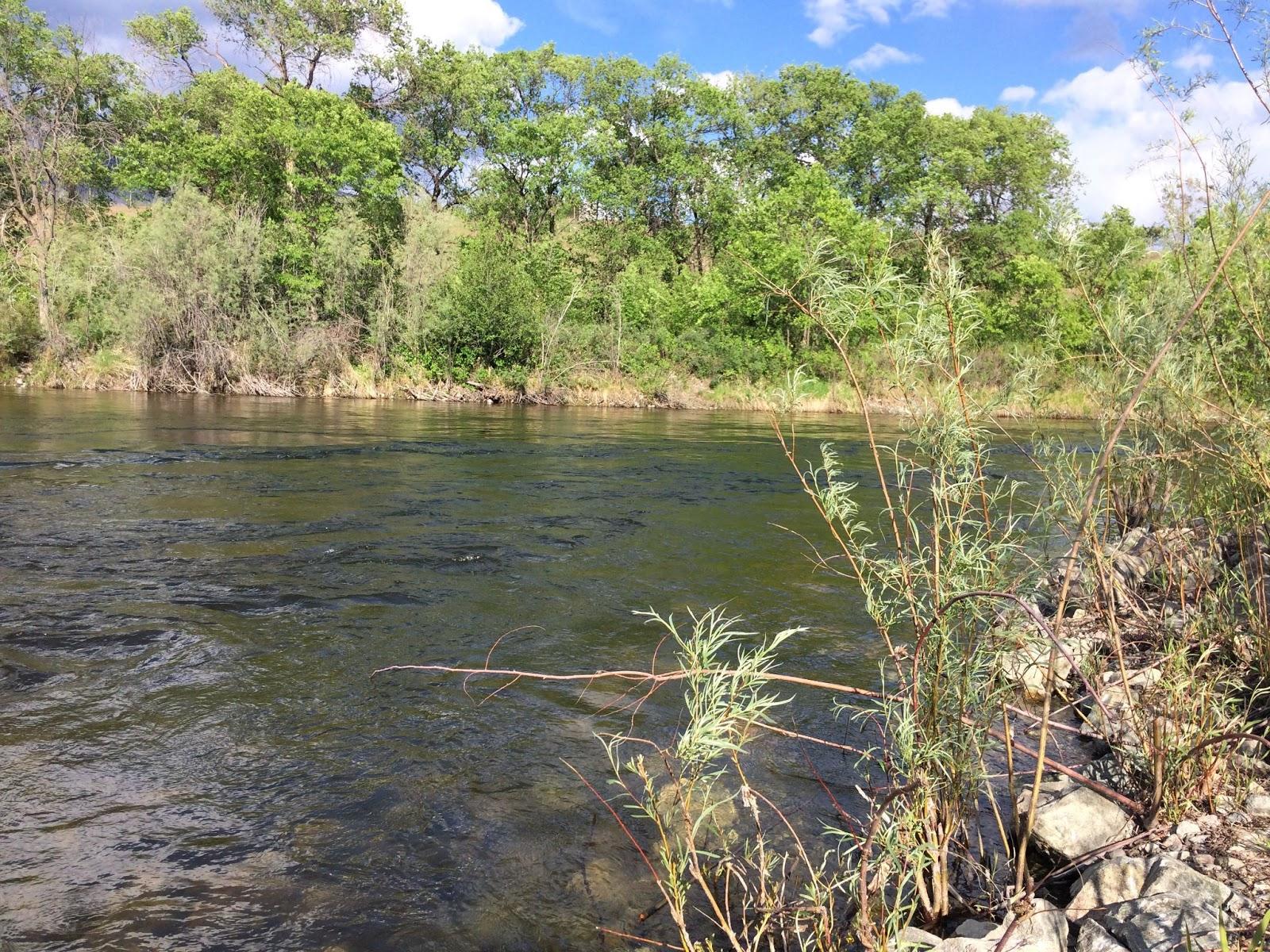The beautiful Okanagan River