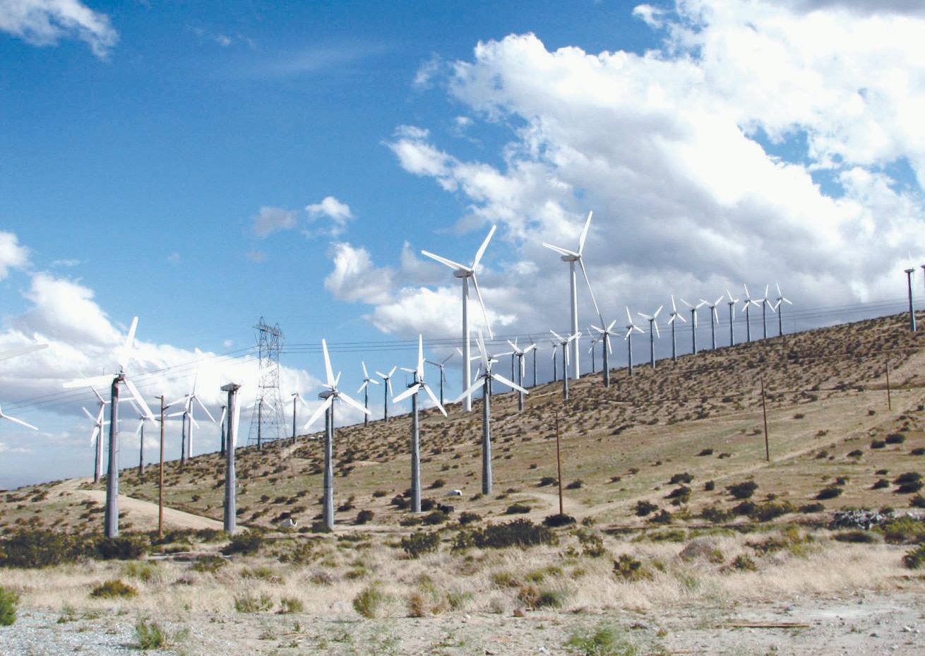 A wind farm near Palm Springs, California.