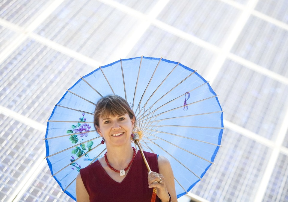 LK_NY_Times_Solar_Image_Petition.jpg