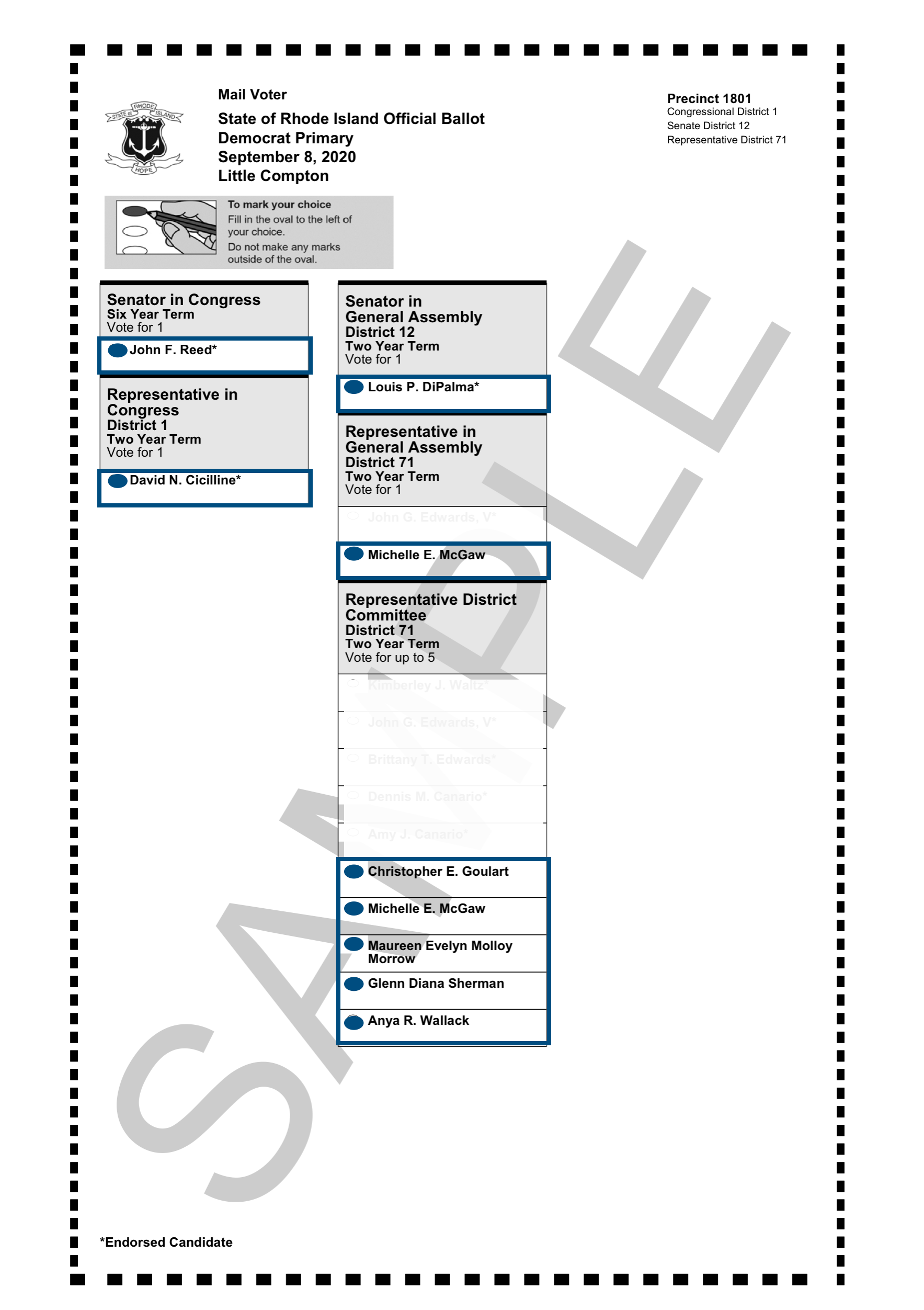 Sample_Ballot_2020_Democratic_Primary.png