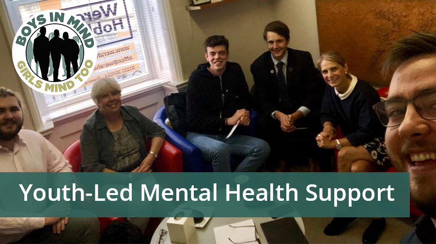 Youth-Led Mental Health Support