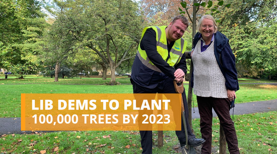 Lib Dems to plant 100,000 trees by 2023