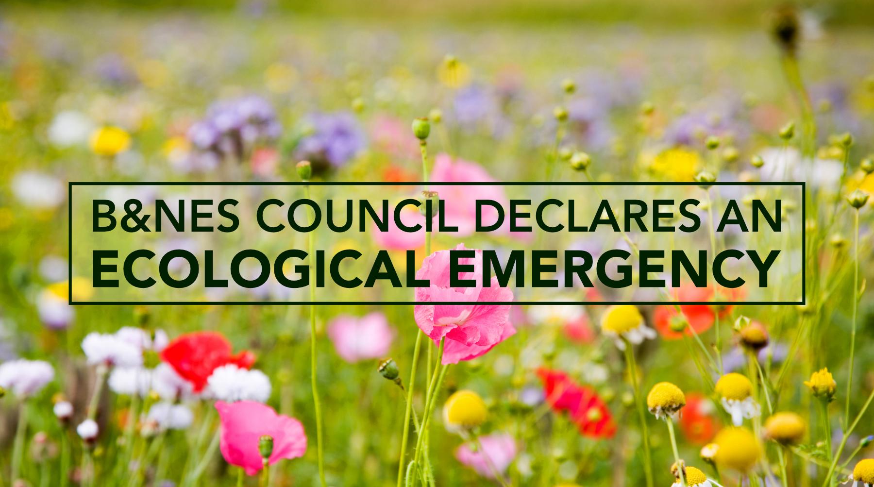 B&NES Declares Ecological Emergency