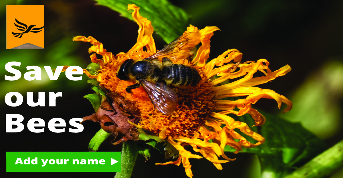 Save our Bees - Keep Ban on Bee-killing Pesticides