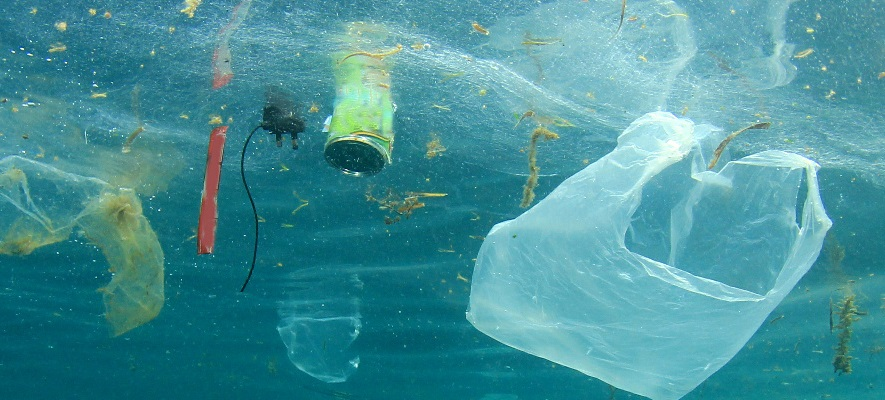 Two-thirds of plastic in packaging pots and trays unrecyclable