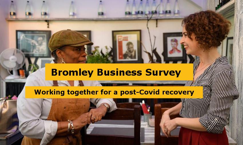 key_campaign_image_Business_Survey.jpg