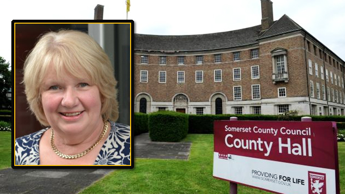 Jane Lock, Leader of the Liberal Democrat group at Somerset County Council