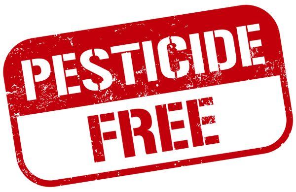 Make Camden A Pesticide-Free Borough