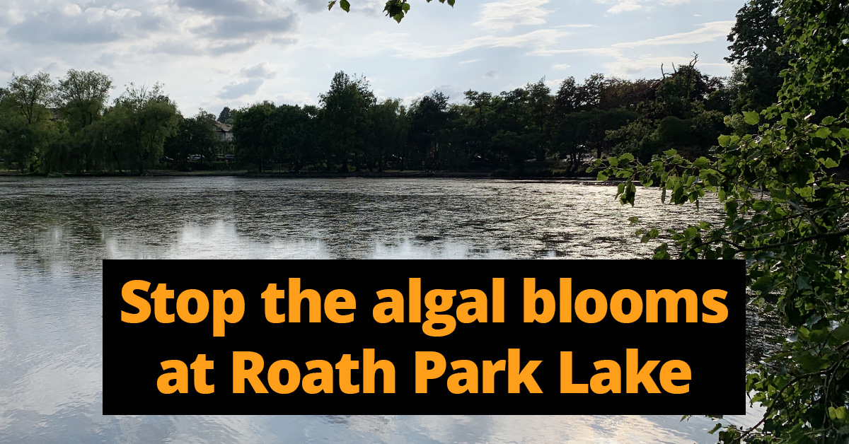 Stop the algal blooms at Roath Park Lake