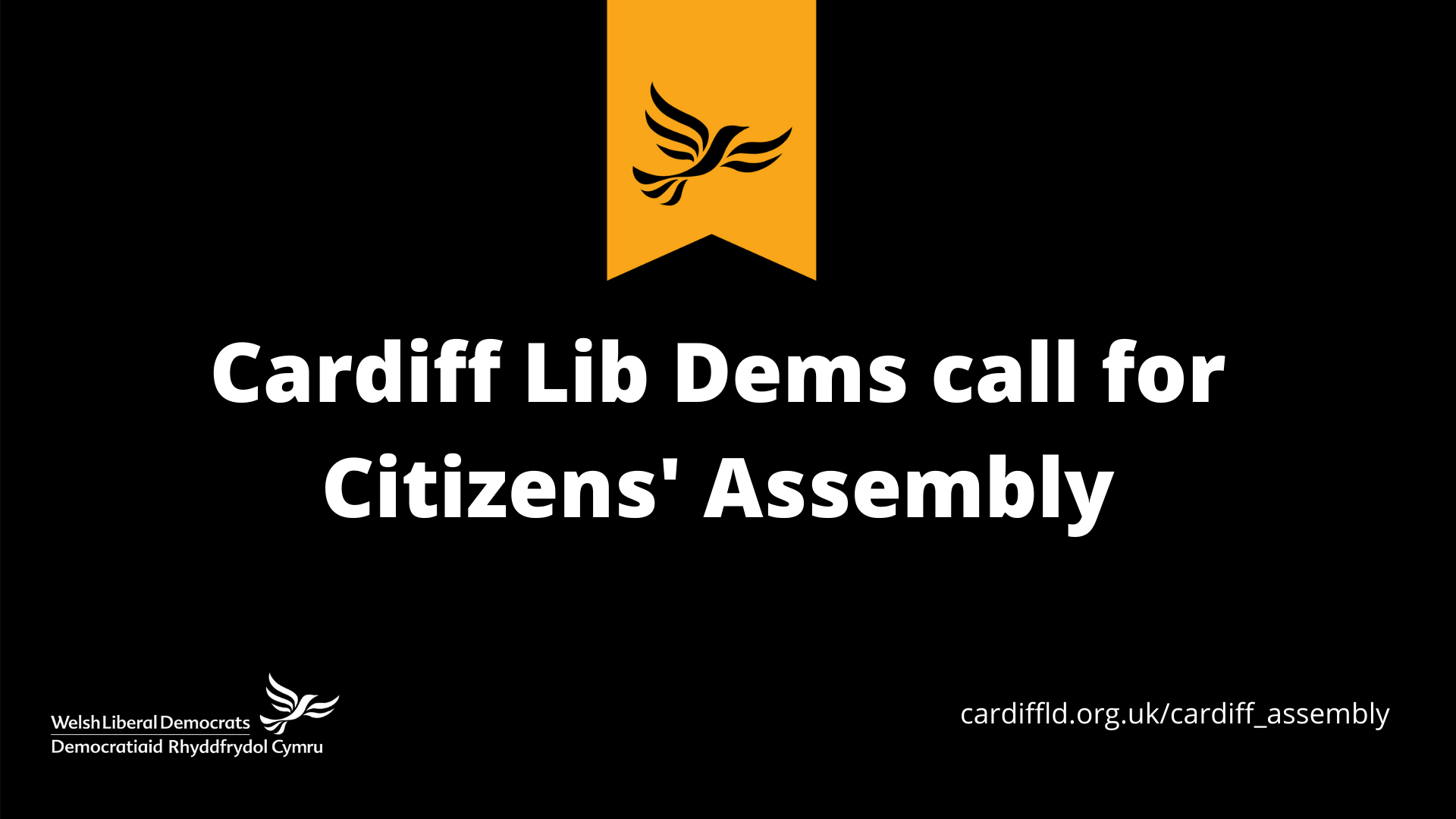Cardiff Lib Dems warn against more of the same from city's politics