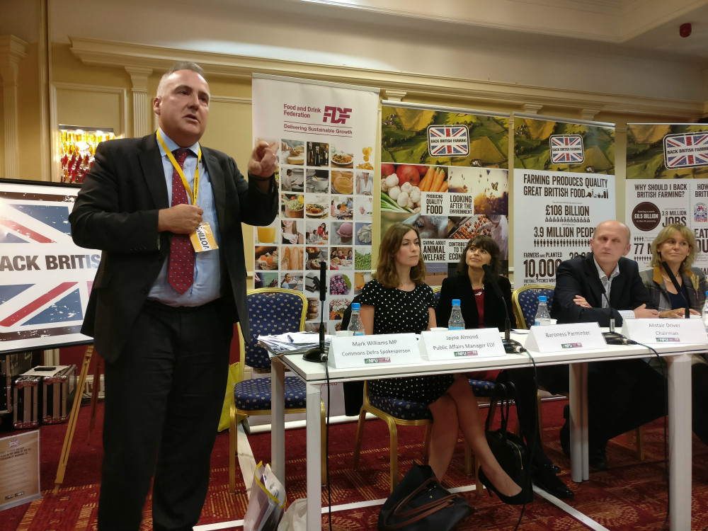 key_Mark_at_NFU_FDF_fringe_conference_autumn_2016.jpg