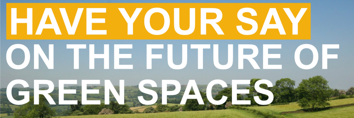 Have your say on green spaces