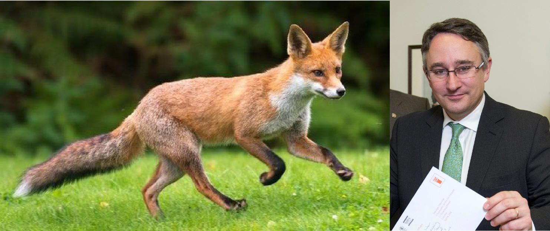 Local MP urged to keep hunting ban