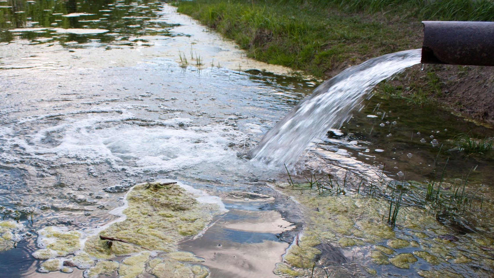 Councillors demand end to sewage dumping in Gloucestershire's rivers
