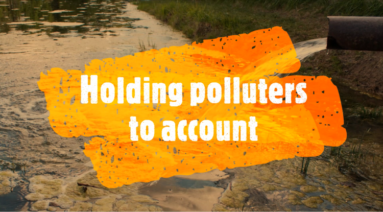 TASK GROUP FORMED TO HOLD POLLUTERS TO ACCOUNT