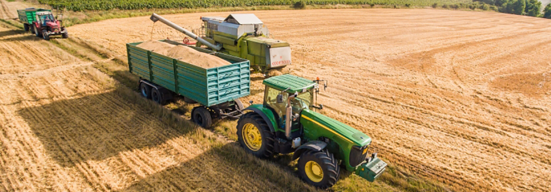 Brexit - Impact of no deal Brexit on UK farming