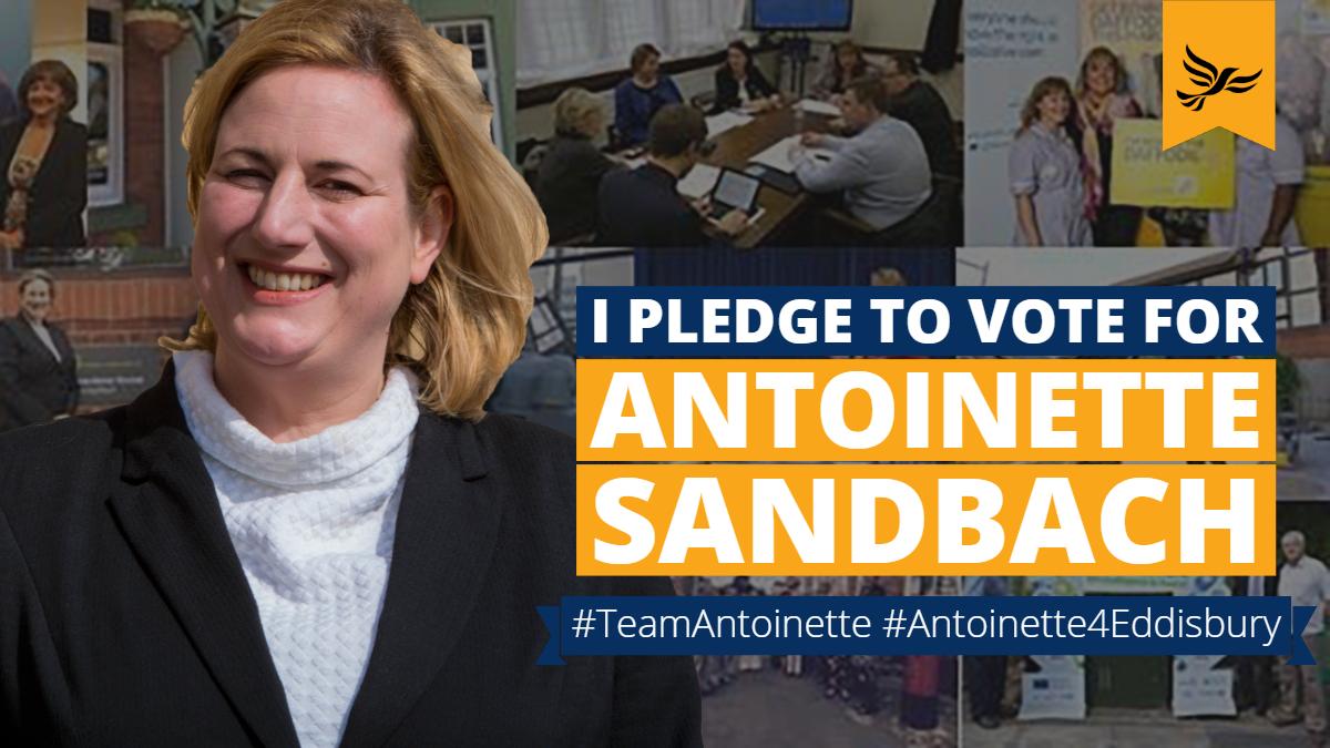 I pledge to vote for Antoinette Sandbach