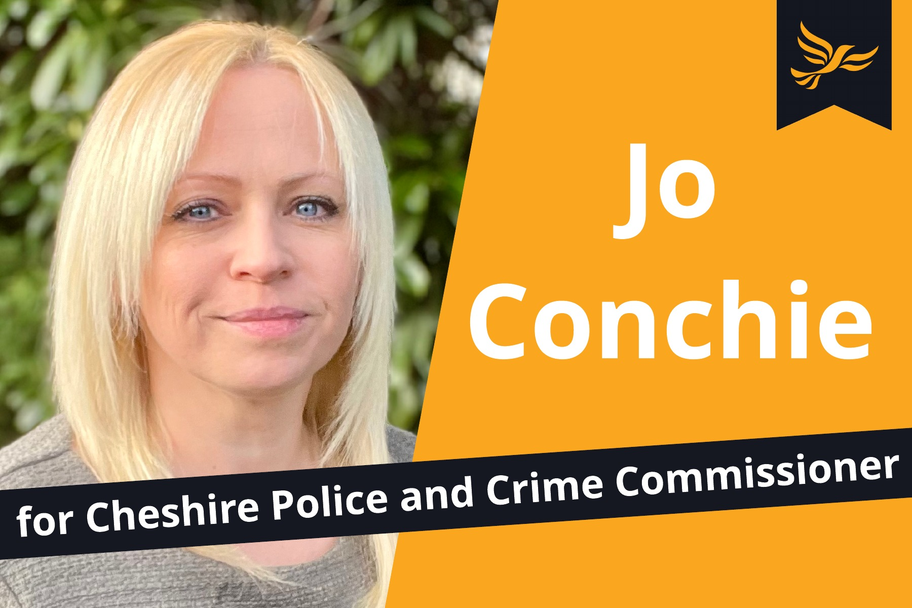 Police and Crime Commissioner Elections get the go ahead