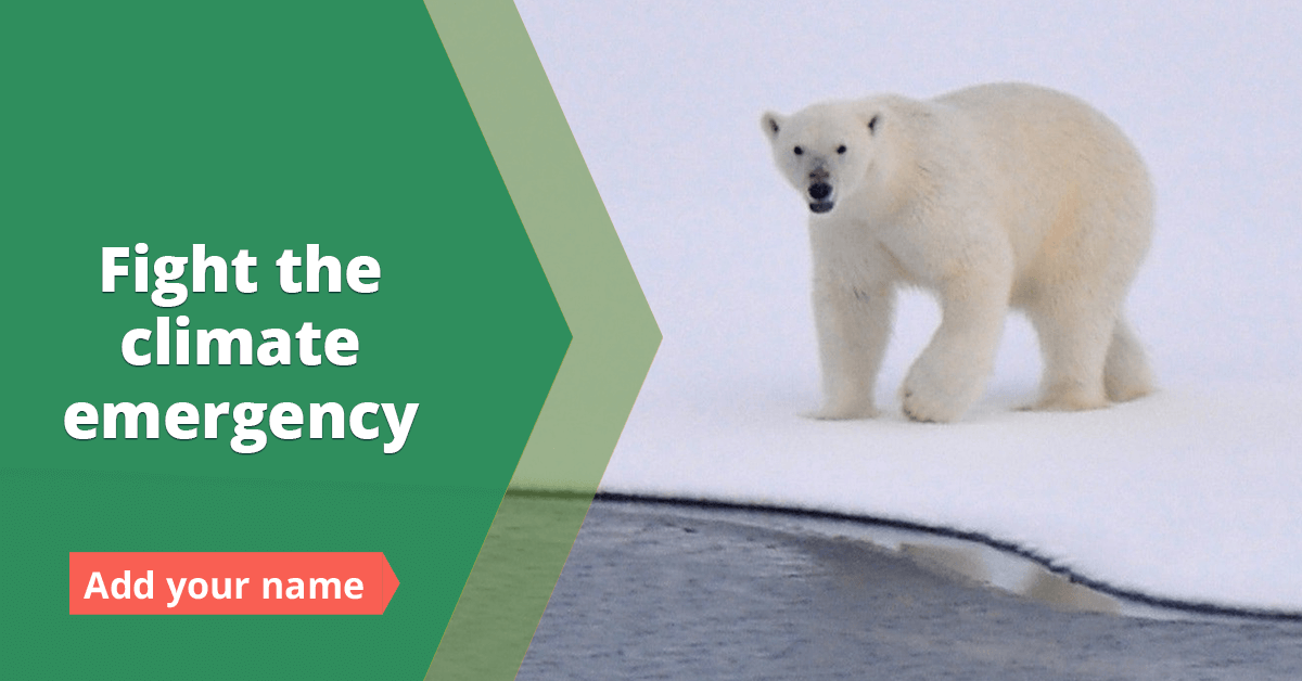 Fight the Climate Emergency