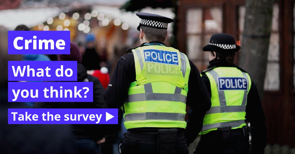 key_crime_survey.png