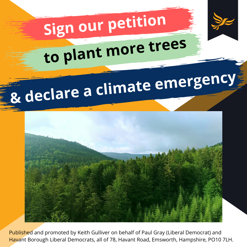 Plant More Trees and Declare a Climate Emergency