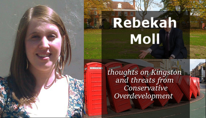 key_rebekah-moll-grove-lib-dems-liberal-democrats-fairfield-overdevelopment-tower-blocks-conservative-tory-tories-conservatives-kevin-daviscandidate.jpg
