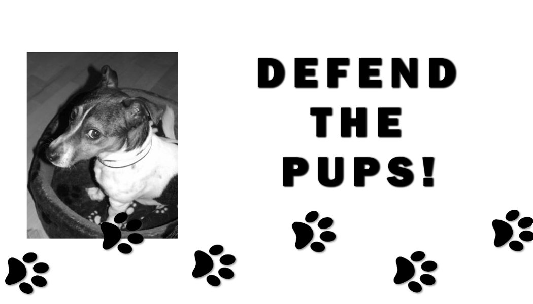 key_defend-the-pups-kingston-lib-dems.jpg