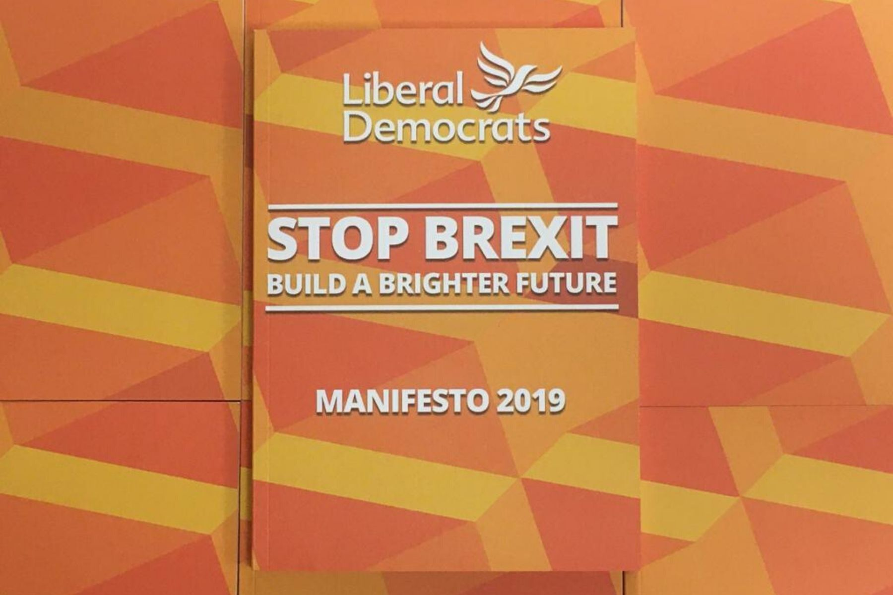 Liberal Democrat manifesto offers a brighter future - from the environment to mental health