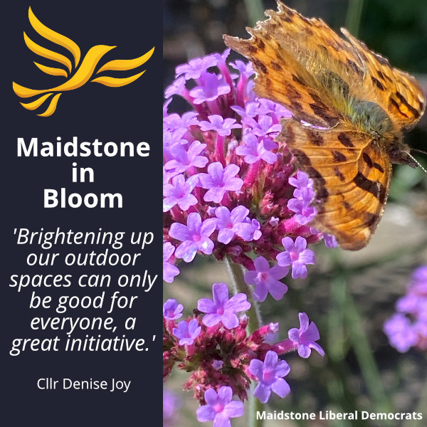 Maidstone in Bloom passed