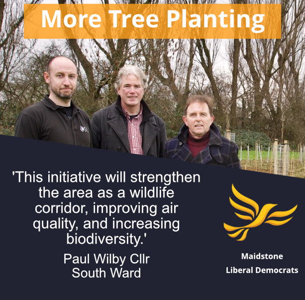 Tree planting in South Ward