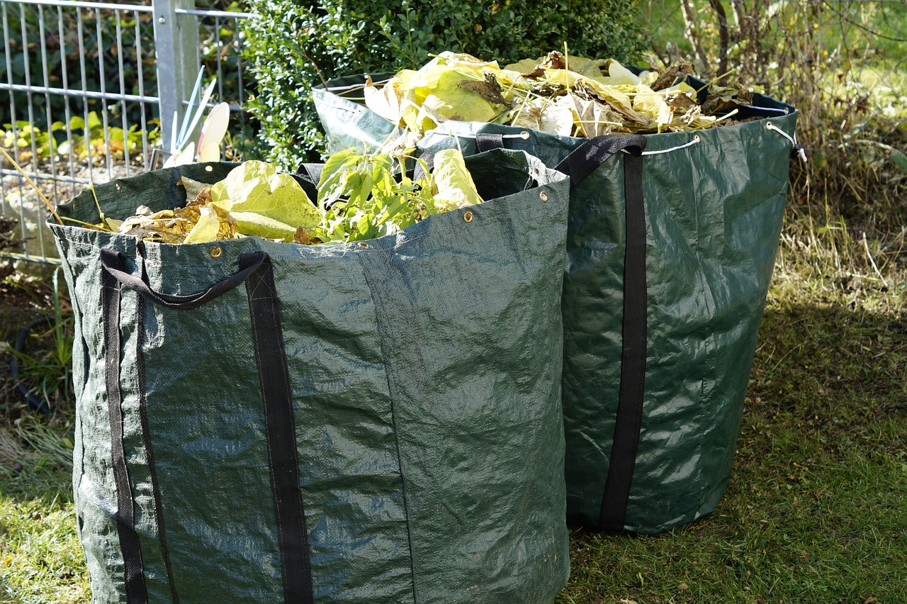 Green waste schemes in Dorset and BCP back and running, tips to re-open next week