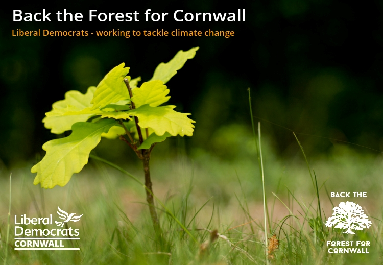 Back the Forest for Cornwall