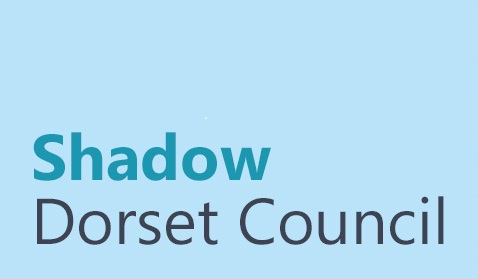 shadow-dorset-council-logo.jpg