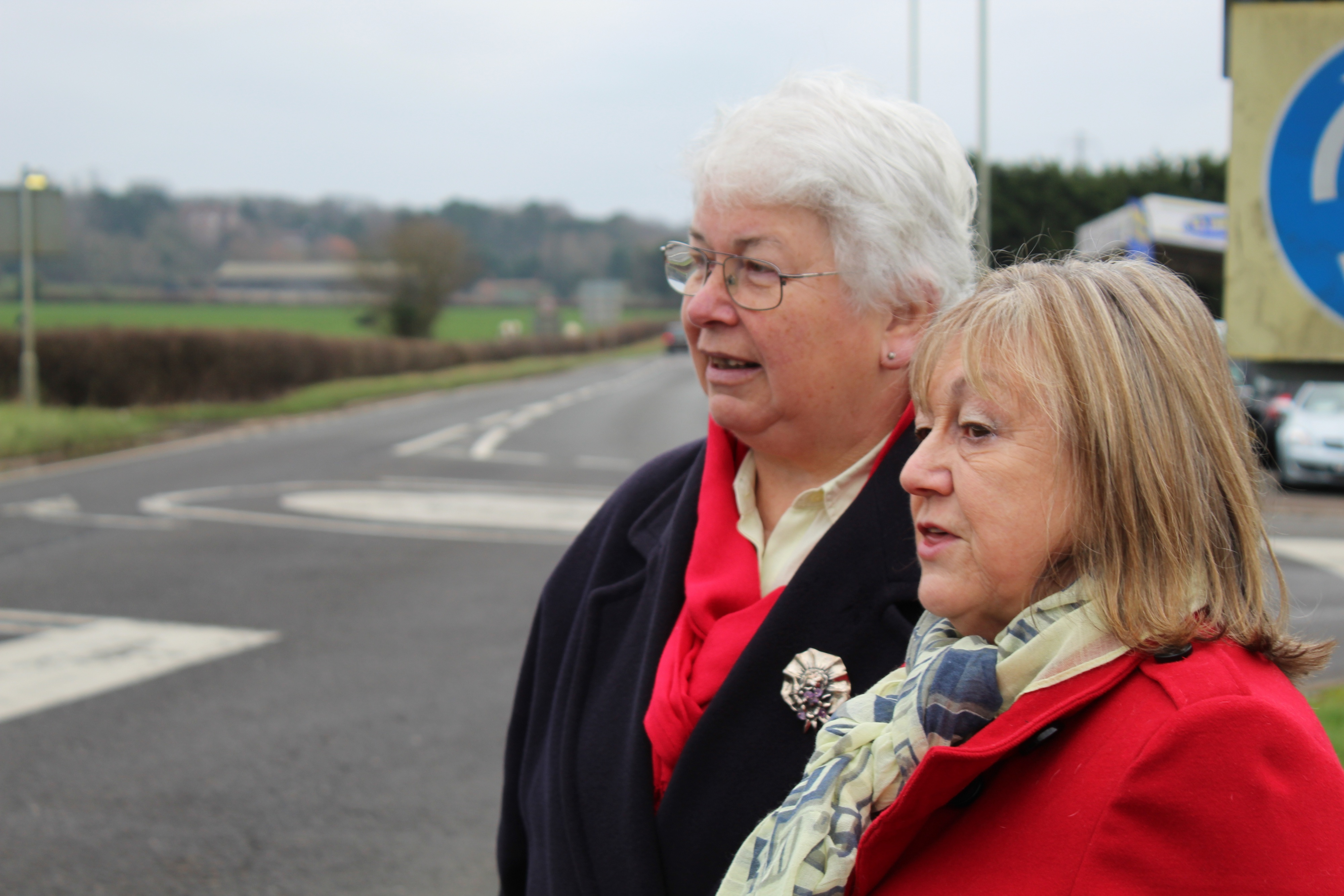 Vale Liberal Democrats say NO to the Expressway