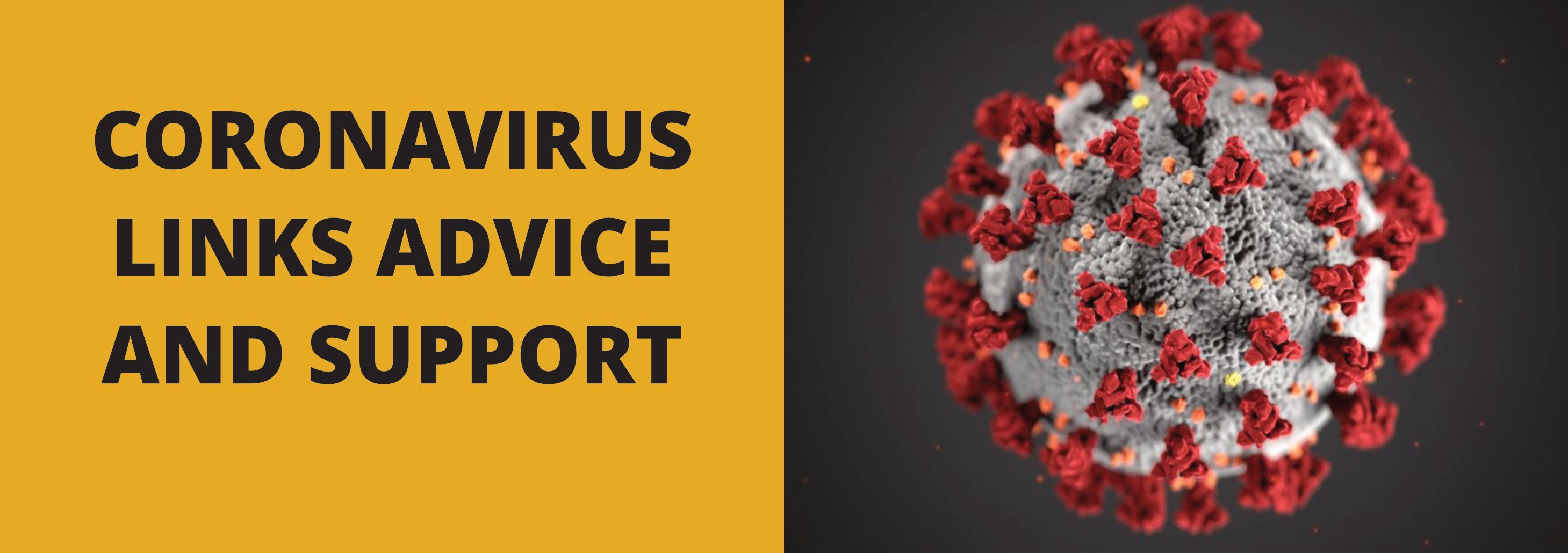 Coronavirus_support_advice_splash