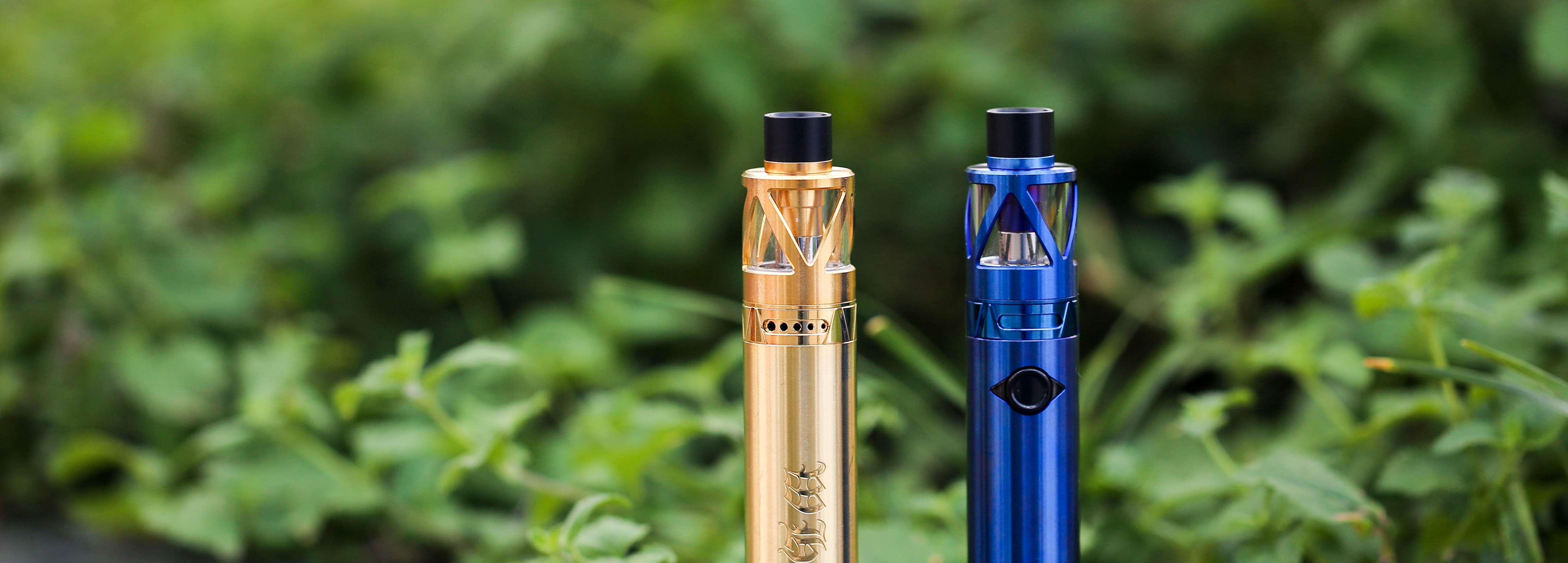 Promote Local Business Legalise vaping in Queensland