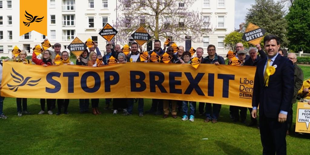 Lib Dems Surge in European Elections