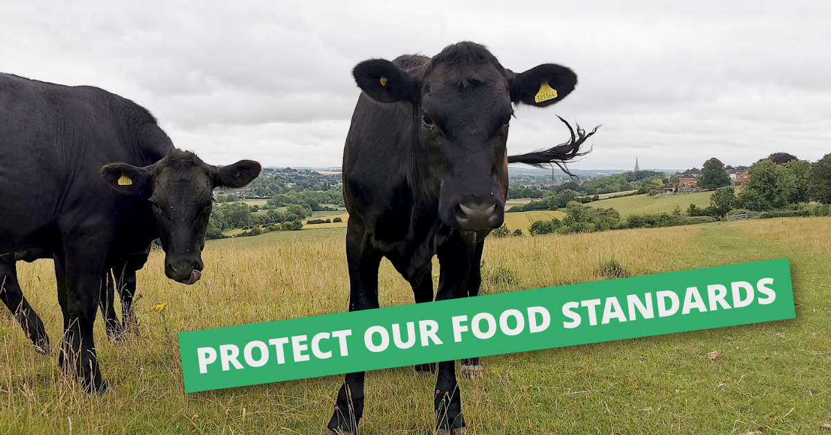 Conservative MPs Reject Bid to Protect Post-Brexit Food Standards