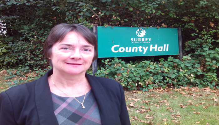 STATEMENT FROM CLLR HAZEL WATSON ON TORY COUNCIL
