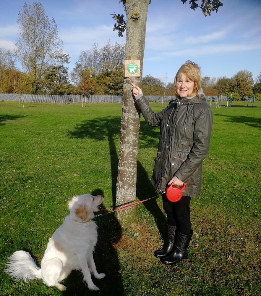 Southport Lib Dems Call for Commonsense on Dog  Controls
